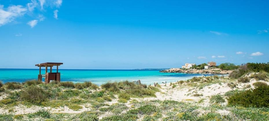 Spanish Journeys goes to the beach at Es Trenc Mallorca