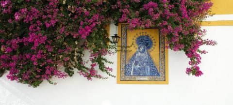 Plazas and Patios of Córdoba on a Spanish Journeys Trip