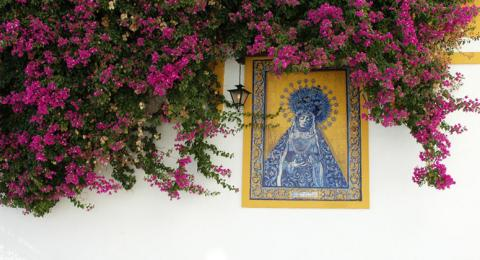 Plazas and Patios of Córdoba on a Spanish Journeys Trip